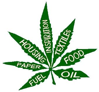 cannabis_ins